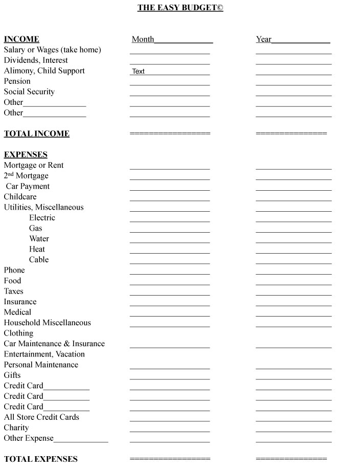 Easy Budget Form For WomenS Financial Planning